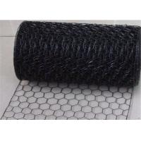 Professional Weaving 18 Gauge Electric Galvanized Black Vinyl Chicken Wire for Cages Manufactures
