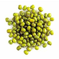 China 2016crop best quality green mung beans on sale