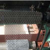 China Electro Galvanized Chicken Wire Netting for Wall Plastering and Building wholesale