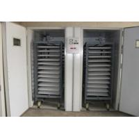 bar chair and counter Automatic egg incubator Manufactures