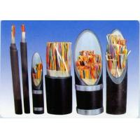 China Plastic insulated control cables wholesale