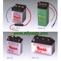 CSB Battery 6 VOLT SERIES Manufactures