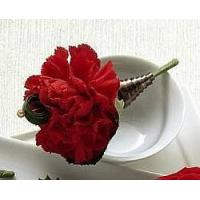 China View our full inventory The FTD Red Carnation Boutonniere wholesale