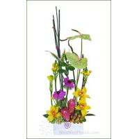 China Festive Christmas Flowers Aloha Mom Arrangement on sale