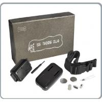 China Remote dog training collars Small/Medium Anti-Bark collar -rechargeable wholesale