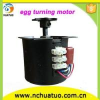incubator accessories automatic egg turning motor for egg incubator Manufactures