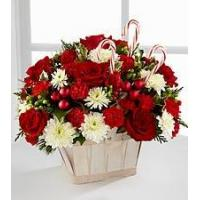 China Red Carnation NO.51 delivery flower to taiwan wholesale