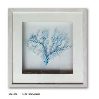 Sea Fan Shadow Box with wood frame Manufactures