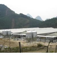 Buy cheap Low cost Light steel structure pig house/ shed In China from wholesalers