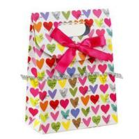CC-PB121 Lovely Printed Carrier Bags Manufactures
