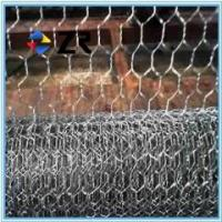 Galvanized and pvc coated bird animal Manufactures