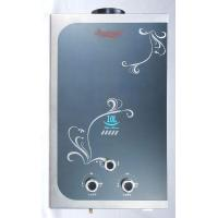 China Water heater WLD-W001 on sale