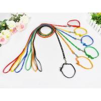 China Leash and Collars Shining pattern/LC(2) wholesale